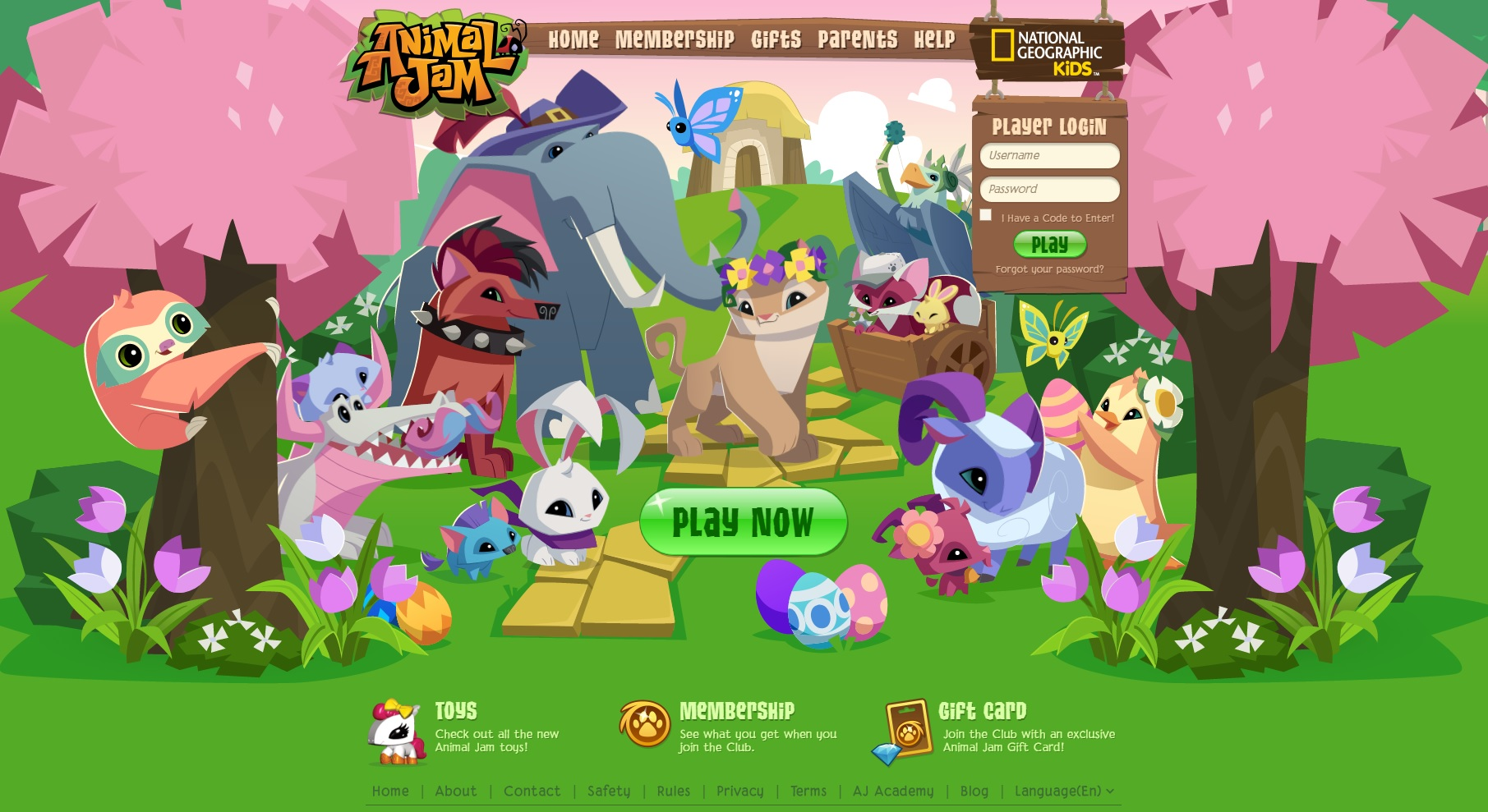Squishy Animal Jam : Evan Donohue